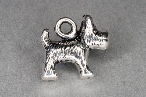 M.ch.an Dog